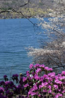 Spring on Keuka Lake